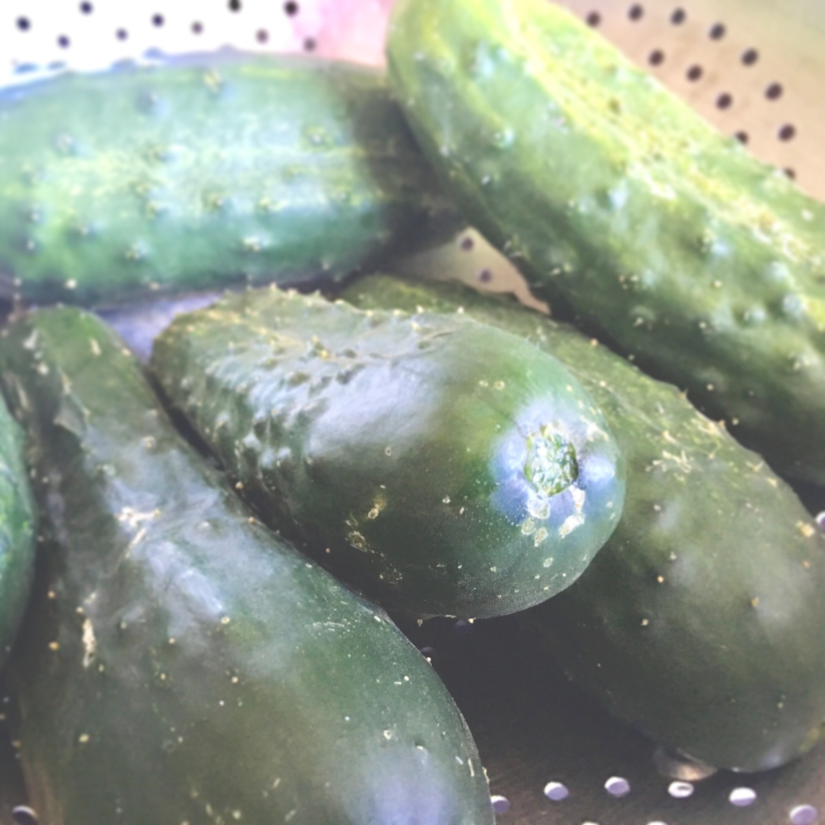 4 Recipes For Those Cucumbers In Your Garden